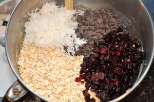 Oats, chocolate chips, craisins, and shredded coconut